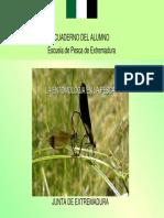 5_Entomología