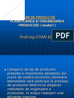 Tipuri de Productie