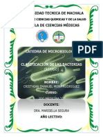 Microbiologia III Trimestre - Clasificacion de Las Bacterias