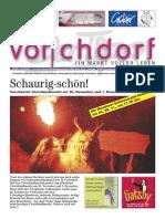 Vorchdorfer Tipp 2013-11
