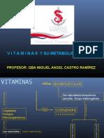 35081364 Vitaminas y Su Metabolismo