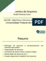 Aula 6 Fundamentos Arquivos Handouts