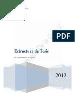Estructura de Tesis Maestria y Doctorado 2013 Luz]