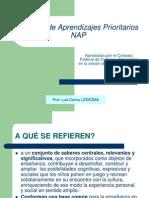 04-Núcleos de Aprendizajes Prioritarios NAP