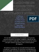 Correlaciones_de_tejido_Conectivo_Especializado_Cartilago_y_hueso.c.pptx