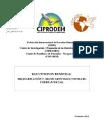 Informe Preliminar Elecciones Honduras Nov2013
