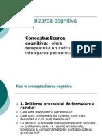 Conceptualizarea cognitiva.02