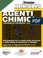 MiniManuale_Chimica2011_estratto