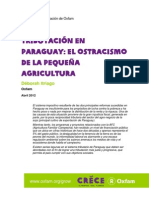 Rr Taxation Paraguay Smallscale Producers 24052012 Es