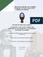Tesis de Grado - Análisis de la Situación Laboral del Profesional en Turismo.pdf