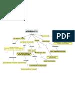 Mapa Conceitual_ Gregory laborde_biologia_nemátodos