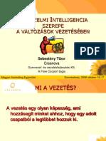 Sebesteny Tibor Erzelmi Intelligencia Szerepe a Valtozasok Vezeteseben