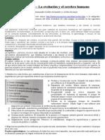 Resueltas Actividades y tareas unidad 2 y 3 Psicología