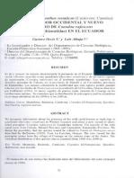 RM-081 Presencia de Speothos venaticus en el Ecuador Occidental y Nuevo Registro de Coendou rufescens en el Ecuador.pdf