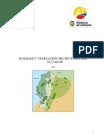 RM-031 Información Bosques y Vegetación Protectores del Ecuador.pdf