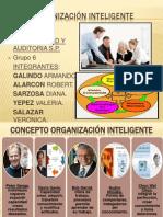 Expo Organizacion