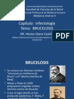 Brucelosis y Salmonelosis 2013