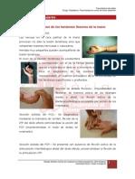 4.2._lesiones_tendinosas