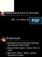 Metabolisme Purin & Pirimidin
