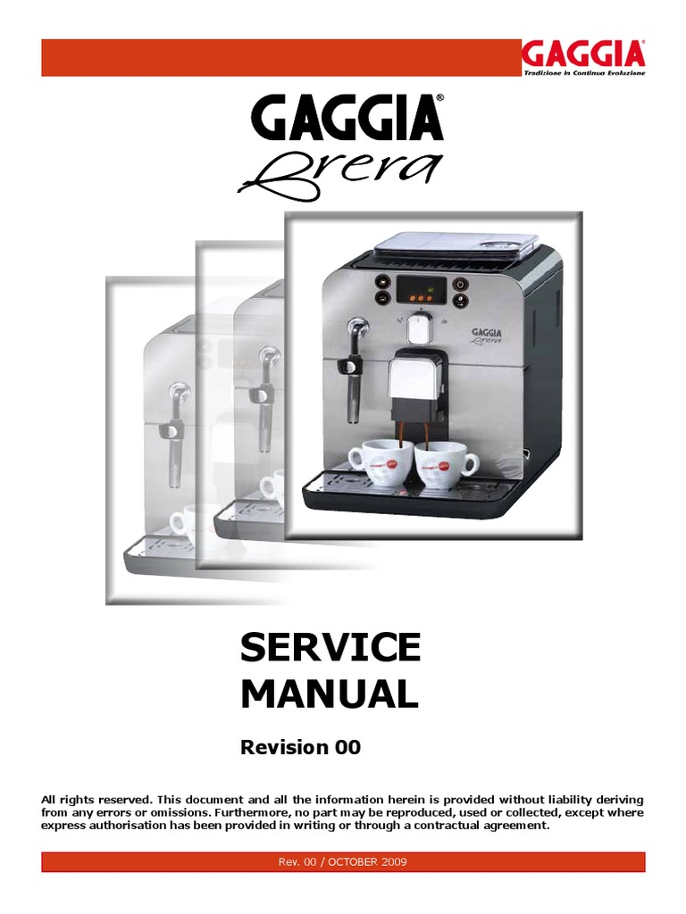 gaggia classic cleaning instructions