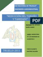 REDUCCION DEL TAMAÑO Y TAMIZADO