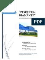 Informe Pesqueria Diamante