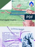 esclerosis-nella-y-bea-1227229082158014-9