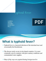 Typhoid Fever- Public Health