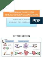 Pulmon Inmunodeficiencias Primarias