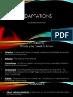 adaptations vocabulary pp