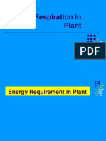 7.5 Respiration in Plants