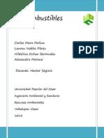 Biocombustibles finaal