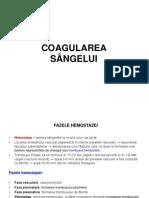 COAGULAREA
