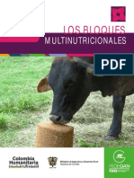 cartillamoduloalimentacionbloquesnutricionales-130705092214-phpapp01