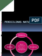 Penicilinas Naturales