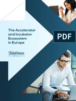 The Accelerator and Incubator Ecosystem in Europe