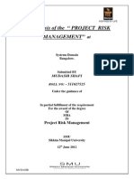 Project Risk Management Printout