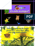 ceesteecologia