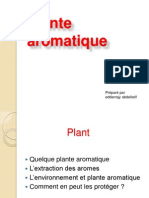 Plante Aromatique