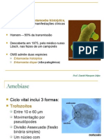 155253_Amebíase