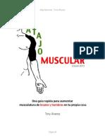 Atajo Muscular - Brazos y Hombros
