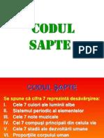 Codul Sapte
