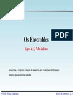 Ensembles IFSC