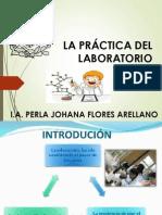 Quimica Practicas de Laboratorio