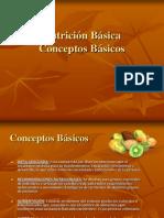 Conceptos Basicos-Nutricion Saludable