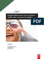 Enquête Adobe Scene7 sur le commerce
