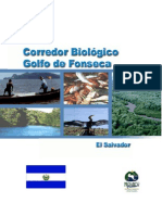 Corred or Biologic o Golfo Salvador