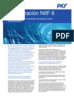 NIIF-6