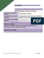 plantilla plan unidad desarrollada 2013