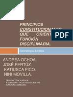 Principios constitucionales que orientan la función disciplinaria